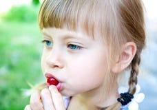 Nice girl in the garden with cherry Stock Photos