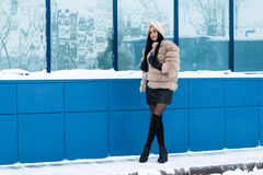 Nice girl outdoor in a winter. Day Royalty Free Stock Photos