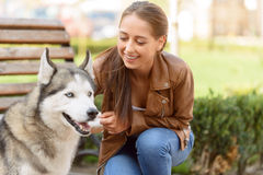 Nice girl playing with dog Stock Photo