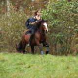 Nice girl riding a horse without bridle or saddle Stock Photos