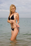 Nice girl at the sea. Attractive young long-haired blond woman in black swimsuit at the sea Stock Images