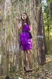 Nice girl in violet dress near wicker fence Stock Image