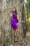 Nice girl in violet dress near wicker fence Stock Image