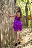 Nice girl in violet dress near wicker fence Stock Photos