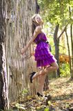 Nice girl in violet dress near wicker fence Royalty Free Stock Photos