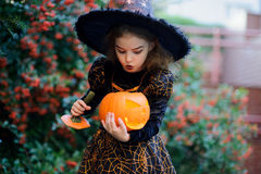 Nice girl of 8-9 years in suit for Halloween with a pumpkin into hands. Royalty Free Stock Photography