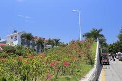 Nice green belt at side of lianlian gulf  ( lovely bay ) hotel Stock Photo