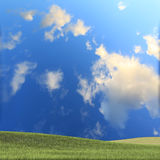 Nice green grass and background Royalty Free Stock Images