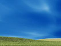Nice green grass and background Royalty Free Stock Photography