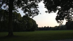 A nice green park stock footage