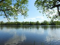 River Atmata and beautiful trees in spring, Lithuania Royalty Free Stock Photo