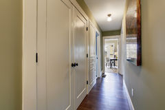 Nice hallway with green interior, and hardwood floor. Nice halway with hardwood floor, greeninterior paint, and white closet doors Stock Images