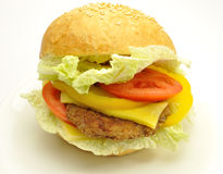 Nice hamburger isolated Stock Images