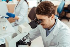 Nice handsome biologist using a professional microscope. Professional research. Nice handsome biologist using a professional microscope while conducting a stock photo