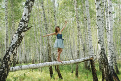 Nice and happy young girl on a birch Royalty Free Stock Photo