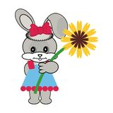 Nice hare with flower. On white Royalty Free Stock Image