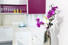 Nice kitchen interior with orchid flower Royalty Free Stock Photos