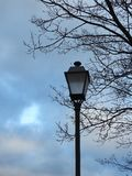 Beautiful black lamp , tree and cloudy sky Stock Images