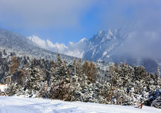Nice landscape in winter Tatras, Royalty Free Stock Photography