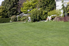 Nice lawn in front yard Stock Photos