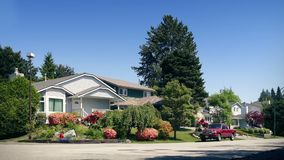 Nice Leafy Suburbs On Sunny Day. Beautiful suburban neighborhood with flowers and plants in gentle breeze stock video footage