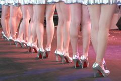 Nice legs Royalty Free Stock Image