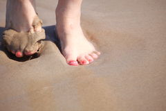 Nice legs in water Stock Images