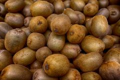 Brown kiwis waiting for a someone who buy them. Nice light-brown kiwis for sale looking very good in food store Royalty Free Stock Images