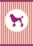 Nice lilac poodle stock illustration