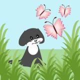 Nice little dog and butterflies Stock Photos