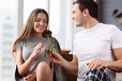 Nice loving boyfriend presenting a rose Royalty Free Stock Photography