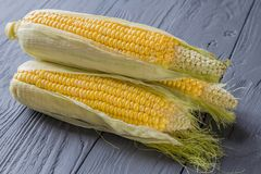 Macro view of three corn cobs pile on the wooden table. Nice macro background of healthy food Royalty Free Stock Photo