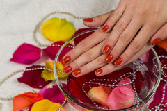 Nice manicure Stock Photography