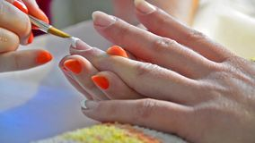 Nice manicured woman nails Stock Photos