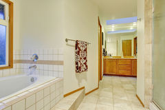 Nice master bathroom with jacuzzi tub Stock Photo
