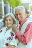 Nice mature couple Stock Images