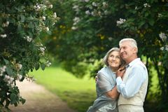 Nice mature couple Stock Image