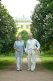 Nice mature couple walking Stock Images
