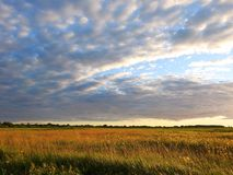 Field and beautiful cloudy sky, Lithuania. Nice meadow and beautiful cloudy sky in evening before sunset royalty free stock images