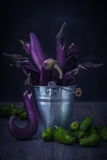 Nice moonlight still life of thin purple eggplants in metal bucket and green peppers on the wood background. Raw food stock photography