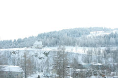 Nice mountain forest in winter Royalty Free Stock Images