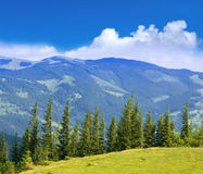 Nice mountain scene Stock Photography