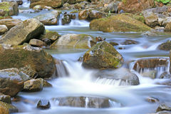 Nice mountain stream Royalty Free Stock Photo