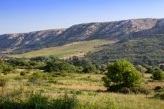 Nice mountain with trees and clear blue sky, island Krk, Croatia royalty free stock image