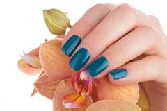 Nice and neat green nails. Beautiful and neat nails green closeup Stock Images