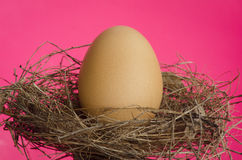 Nice nest egg on pink background Royalty Free Stock Photos