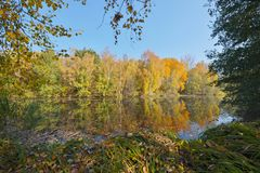 Nice October day. Nice autumn day on the shore of a pond in October, Czech Republic stock photos