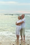 Nice old couple Royalty Free Stock Images