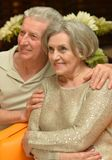 Nice old couple Royalty Free Stock Image