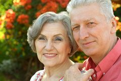 Nice old people Royalty Free Stock Image